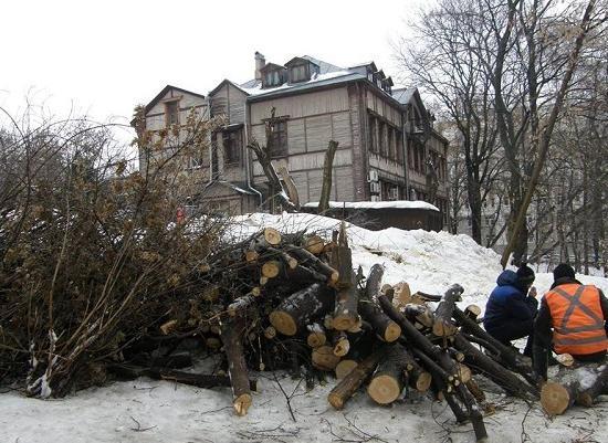 ВНижнем Новгороде вырубают столетние липы под строительство дома