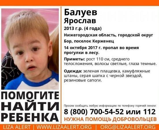 Нужна помощь! Влесу Нижегородской области потерялся 4-летний ребенок