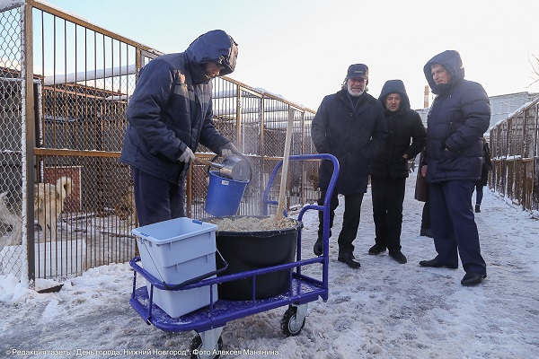 ВНижнем Новгороде откроется новый приют для бездомных животных
